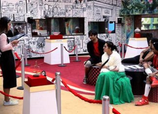 Big Boss11, Shilpa Shinde, Hina Khan, aakash dadlani, Puneesh SHarma, Luv, Ticket to Finale,