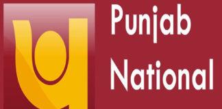 PNB, Punjab National Bank, Fraud, Fake Transaction