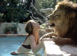 Hollywood Actress,Melanie Griffith,Lion Pet,Photos