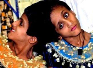 Salman Khan, Black Buck Poaching Case, Twins Sisters, Fast