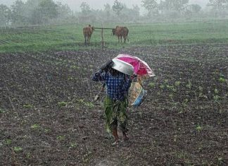 Rain, Skymet Weather, Farmer, Good News, Drought