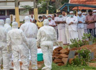 Nipah Virus, Bat, Advisory, Arvind Kejriwal