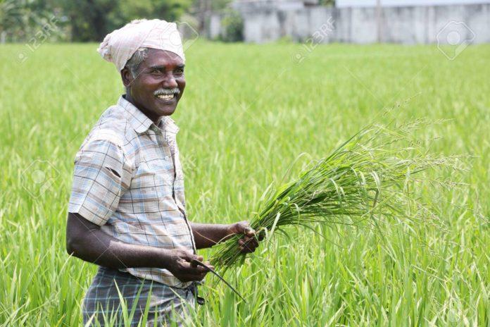 farmers, MSP, Narendra Modi
