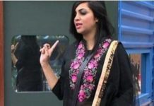Big Boss 11, Arshi Khan, Salman Khan, Saleem Khan, Tv News, Khabrein 24