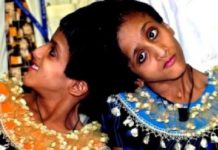 Salman Khan, Black Buck Poaching Case, Twins Sisters, Fast