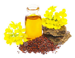 Musterd Oil